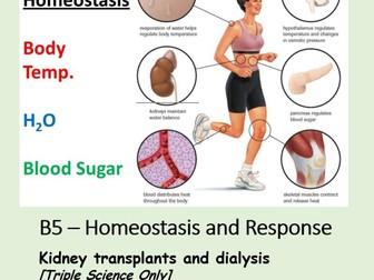 NEW AQA BIOLOGY GCSE (TS) - HOMEOSTASIS & RESPONSE - Lesson 11 – Kidney Transplants and Dialysis