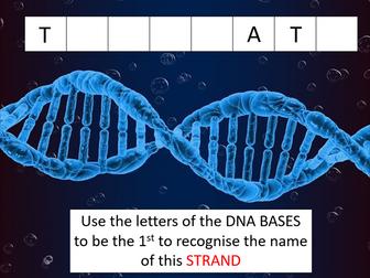 Transcription (CIE International A-level Biology)