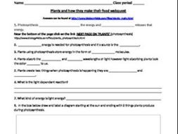 Plants and Photosynthesis web-quest