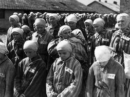 Holocaust Report Writing