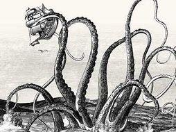 The Kraken, poetry unit