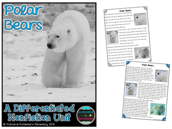 Differentiated Nonfiction Unit: Polar Bears