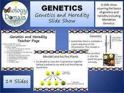 Genetics and Heredity Slide Show