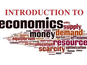 The Island Economy  Economics Activity