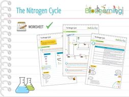 Nitrogen Cycle - Worksheet (KS4) by anjacschmidt - Teaching ...