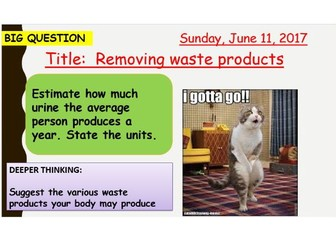 AQA new specification-Removing waste products-B12.2