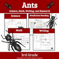 Ants: Unit Study of Ants (Insect Unit)