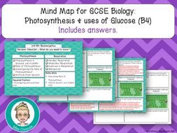 GCSE Biology Revision: Photosynthesis & Use of Glucose