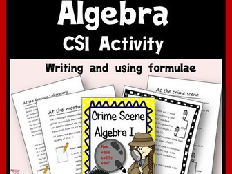 CSI Algebra - Writing and Using Formulae