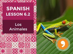 Spanish Lesson 6.2: Los Animales - Animals