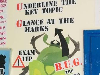 B.U.G. the question classroom display resource