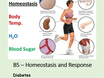 NEW AQA BIOLOGY GCSE - HOMEOSTASIS and RESPONSE - Lesson 9 – Diabetes