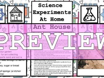 Science Home Experiment - Ant House