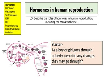 Hormones in human reproduction