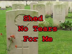 Shed No Tears For Me - Remembrance Day Poem, Song and Video
