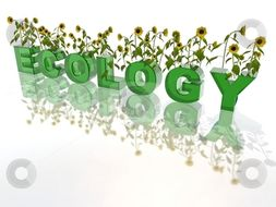 GCSE Ecology Unit new spec for higher tier combined students