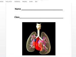 Edexcel gcse pe 9 1 cardio respiratory system workbook by tom1414 edexcel gcse pe 9 1 cardio respiratory system workbook ccuart Choice Image