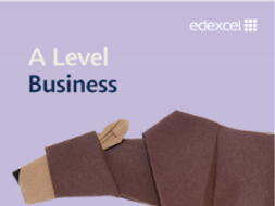 Supply and Demand Business Workbook
