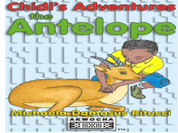 Chidi's Adventures: An African story lesson plans.
