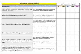 mental-health-wellbeing-audit.docx