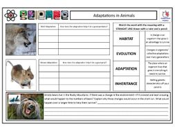 Adaptations in Animals (Predators & Prey) CLF Lesson & Resources - Lesson 6 - KS2 KS3 KS4 BIOLOGY