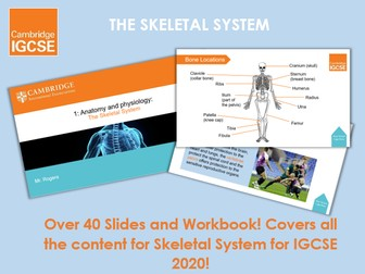 Skeletal System - IGCSE Physical Education Ppt & Workbook
