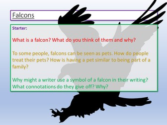 AQA English Language Paper 1  - Falcons