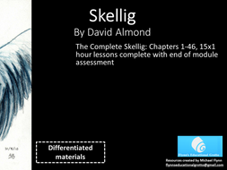 The Complete Skellig Chapters 1-46 - 15x1 hour lessons