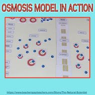 Osmosis-model-Table-Top-Learning.pdf