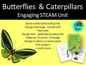 Project Based Learning: Caterpillars & Butterflies - STEAM, Biomimicry, KS1, NGSS