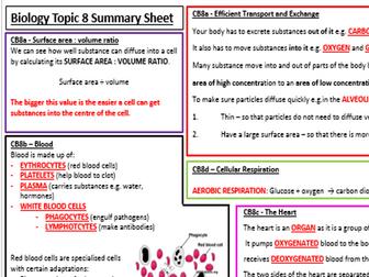 Edexcel Biology CB8 Revision Summary Worksheets