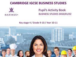 grade 11 business studies exemplar