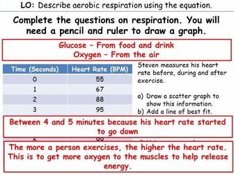 Aerobic Respiration (KS3)