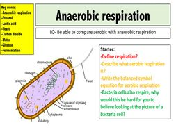 Anaerobic respiration by mr_science - Teaching Resources - Tes