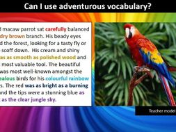 The role of the zoo in education and conservation    Sci Ed spanish essay phrases university zoo