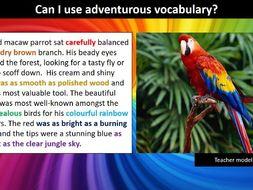 Descriptive essay about zoo