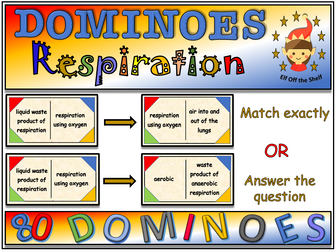 Respiration - Dominoes Game KS3