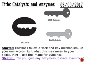 Catalysts and enzymes - complete lesson (GCSE 1-9)