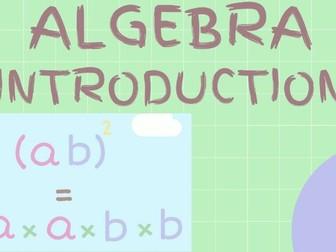 Algebra Basics Introduction Lesson: Video