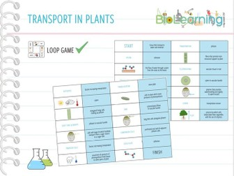 Transport in plants - Loop Game (KS5)