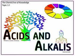 Topic 3 - Acids Revision Guide GCSE