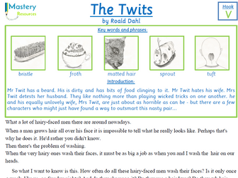 The Twits by Roald Dahl Comprehension KS2