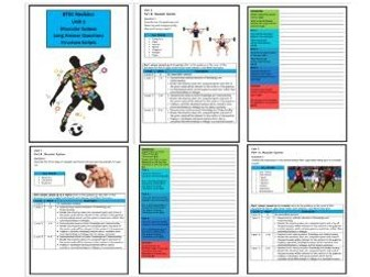 Btec Sport - Level 3 - Unit 1 - Structure Strip - Muscular System (Long Answer Questions)