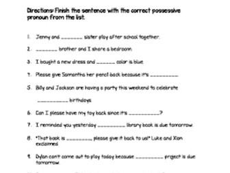 Possessive Pronoun Quiz | Teaching Resources