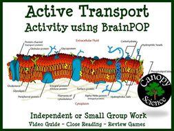 Active Transport Activity using BrainPOP