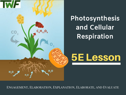 Photosynthesis and Cellular Respiration 5E Lesson Bundle