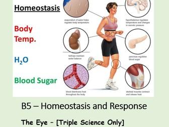 NEW AQA BIOLOGY GCSE (TS) - HOMEOSTASIS & RESPONSE - Lesson 5 – The Eye