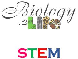 STEM - Biology Experiments Activities - Grades 3 to 6
