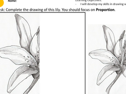 KS3 Drawing Lesson Resources - Proportion: Natural Forms (Formal Elements) Cover Lesson
