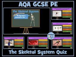 AQA GCSE PE The Skeletal System Quiz
